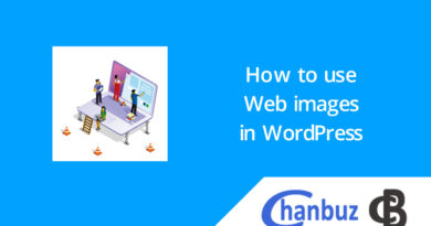 How to use Web images in WordPress